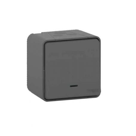 BOUTON POUSSOIR LUMINEUX LED - IK08 - GRIS