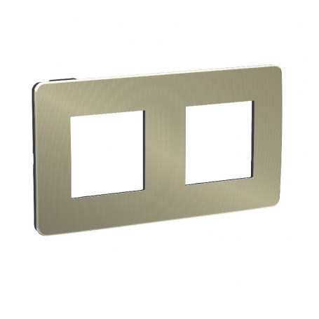 Plaque de finition - bronze - liseré anthracite - 2 postes