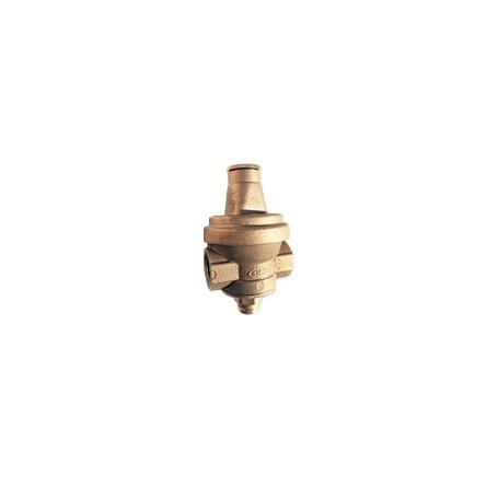 """Réducteur de pression - Femelle/Femelle 3/4"""""""